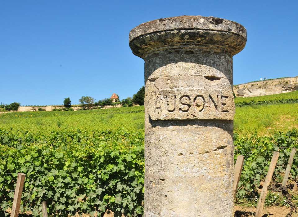 T&t Bordeaux wine and city tour. Винный тур экскурсия в Бордо