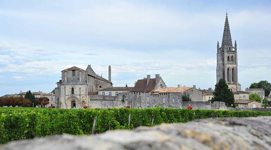 T&t Saint-Emilion wine tour with a private guide. Винный тур в Сент-Эмильон с русским гидом